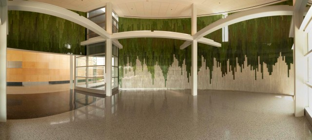 Teresita Fernández   Stacked Landscape   Public Art   USF College of Nursing
